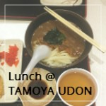 Lunch at Tamoya Udon (Chinatown Point)