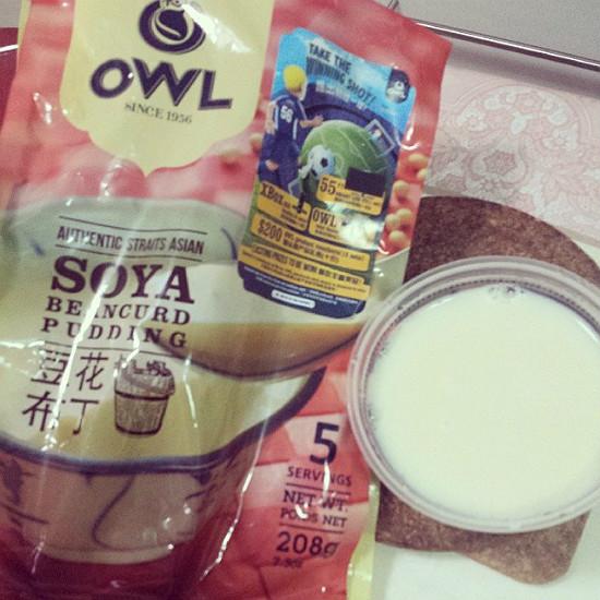 Owl Soya Beancurd Pudding