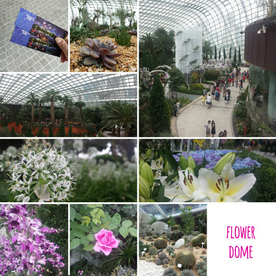 06 Flower Dome